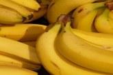 فوائد الموز بحسب ألوانه العديدة !