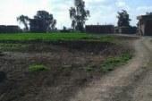 تحرير 3509 محضر مخالفة تقسيم وبيع الأراضي الزراعية بالمنوفية