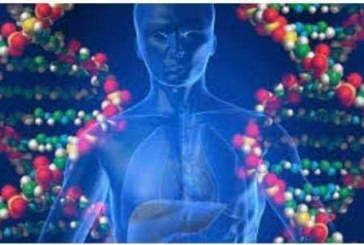 شفرة الحياة ١٠٠ تريليون خلية كل خلية فيها نواة قطرها ١ من المائة من الملليمتر