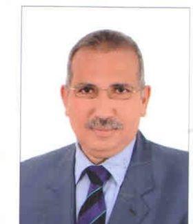 د.عادل عامر