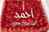 أسرة الجريدة والزميلة الاعلامية/سهام العنانى تهنئ أحمد أحمد صلاح هلال بعيد ميلاده