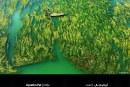 """جائزة حمدان بن محمد الدولية للتصوير الفائزين بموسم """"الماء"""" استرالية تحصد أكبر جائزة تصوير في العالم"""